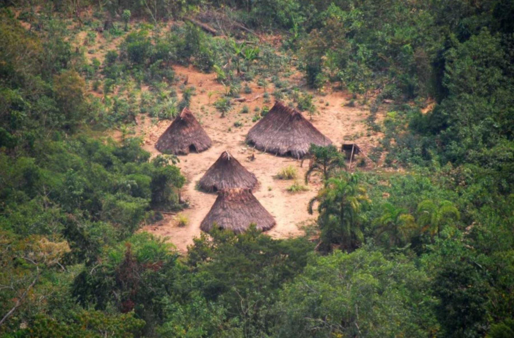 Poder Judicial ordena creación de reservas para indígenas en aislamiento