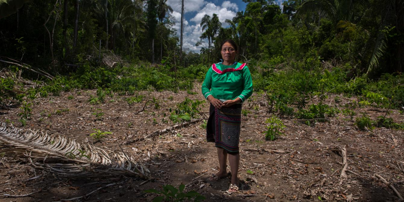 Ordenanza que pretende regularizar la invasión de predios comunales es denunciada por dirigentes de comunidad Santa Clara de Uchunya en Ucayali