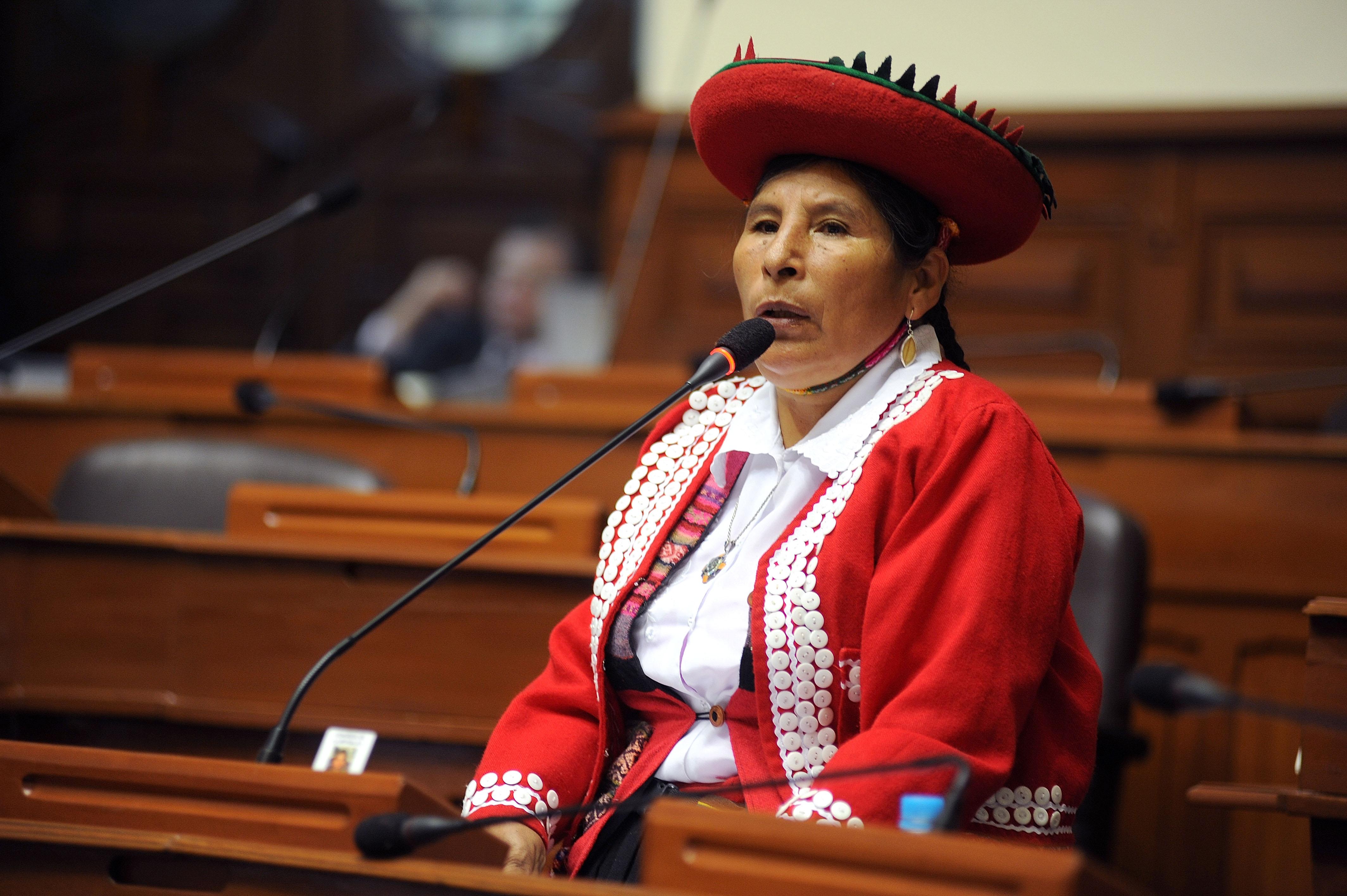 Área de Pueblos Indígenas del IDL a favor de la cuota indígena en el Congreso