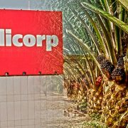 Banco noruego cancela inversiones en Alicorp tras denuncias en compra de aceite de palma (Wayka.pe)