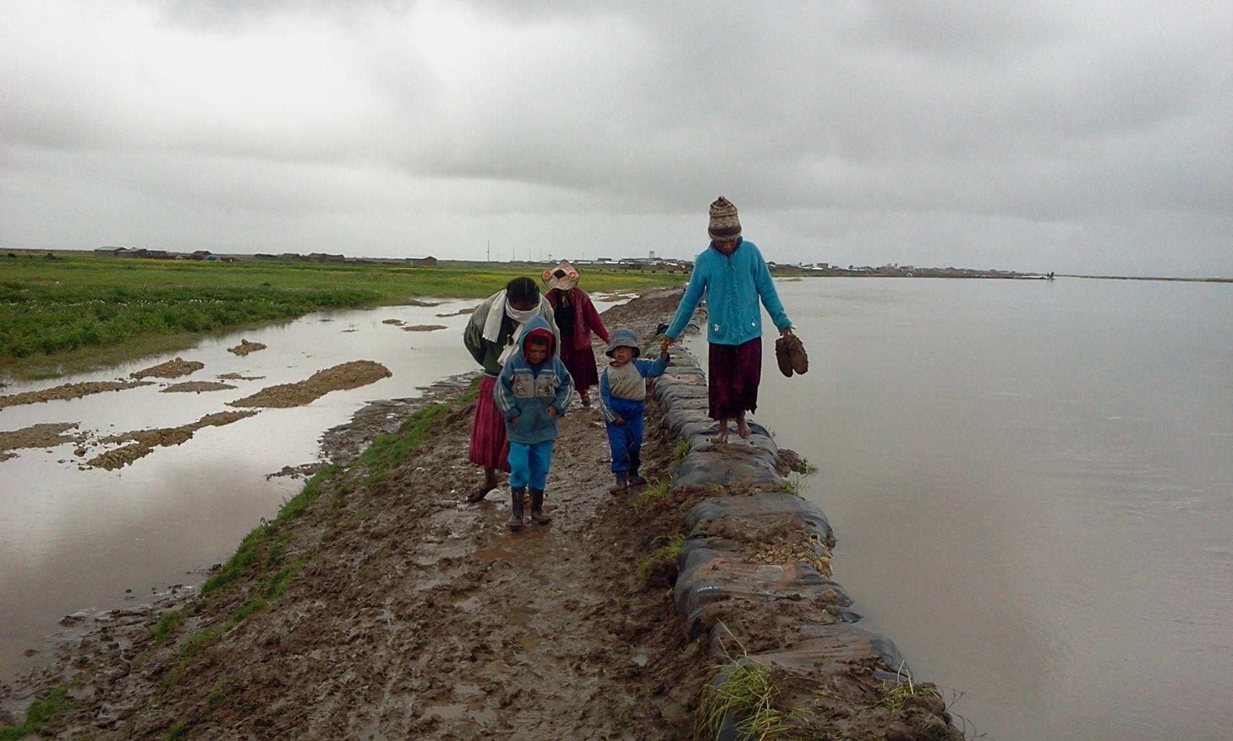 Metales pesados en comunidades de zona aymara de Puno