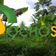 OEFA ordena paralizar actividades de Ocho Sur P. y la multa con 9 millones de soles
