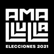 Ama Llulla: Una cruzada de medios contra la mentira en la campaña electoral del 2021