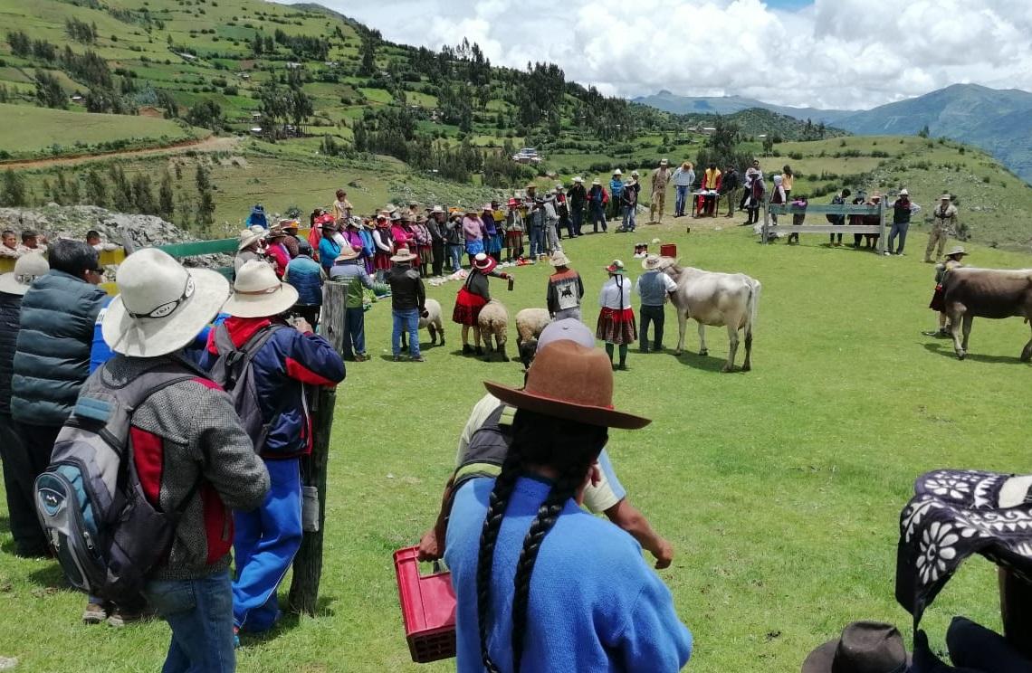 Ccapacmarca: una lucha judicial latente ante reclasificaciones de rutas, estados de emergencia sistemáticos y despojos territoriales