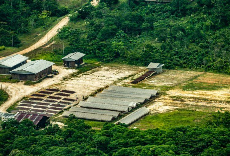 Apelación frente a sentencia inmotivada contra defensora ambiental